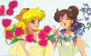 Bishoujo Senshi Sailor Moon Wallpaper