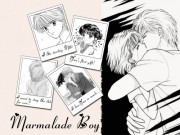 Marmalade Boy Wallpaper