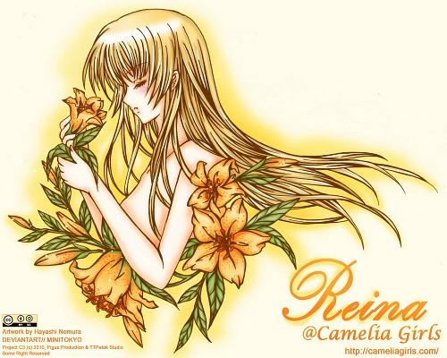 Camelia Girls, Member Art, Original