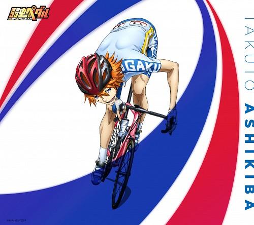 Wataru Watanabe, TMS Entertainment, Yowamushi Pedal, Takuto Ashikiba