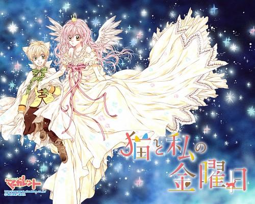 Arina Tanemura, Neko to Watashi no Kinyoubi, Ai Tachibana (Neko to Watashi no Kinyoubi), Nekota Honjo