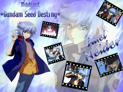 Sunrise (Studio), Mobile Suit Gundam SEED Destiny, Auel Neider Wallpaper