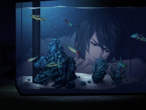 Nitro+, Sweet Pool, Youji Sakiyama, Game CG
