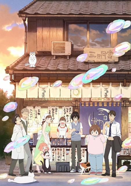 Chika Umino, Shaft (Studio), Sangatsu no Lion, Hinata Kawamoto, Akari Kawamoto