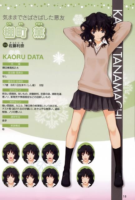 Kisai Takayama, Anime International Company, Amagami, Kaoru Tanamachi, Character Sheet