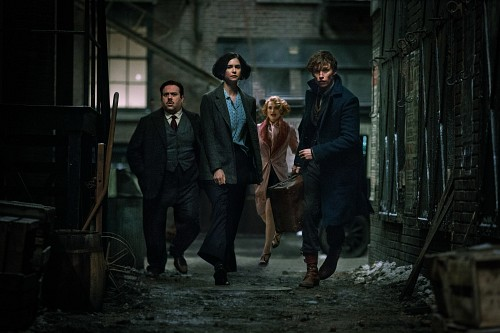 Warner Bros., Fantastic Beasts, Porpentina Goldstein, Newt Scamander, Jacob Kowalski