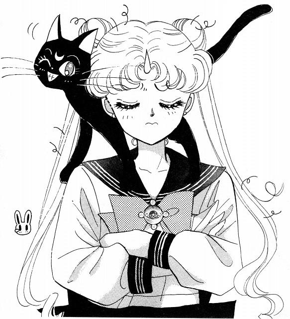 Naoko Takeuchi, Bishoujo Senshi Sailor Moon, Luna, Usagi Tsukino