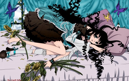 CLAMP, Production I.G, xxxHOLiC, Himawari Kunogi, Places Wallpaper