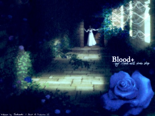 Blood+ Wallpaper