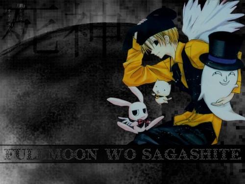Arina Tanemura, Full Moon wo Sagashite, Takuto Kira, Sheldan, Izumi Rio Wallpaper