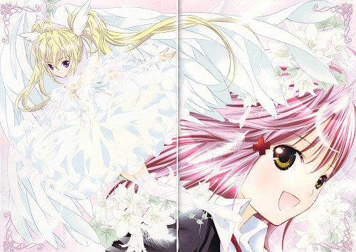 Peach-Pit, Satelight, Shugo Chara, Shugo Chara! Illustrations 2, Amu Hinamori