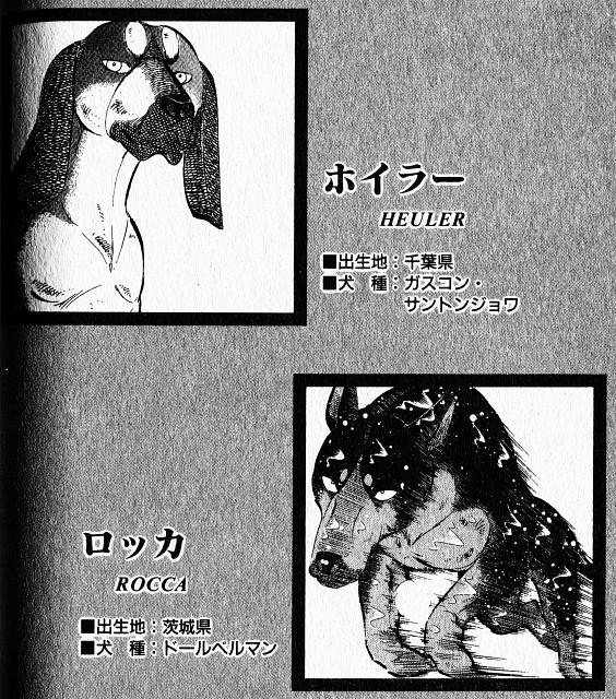 Yoshihiro Takahashi, Ginga: Nagareboshi Gin, Rocca, Heuler