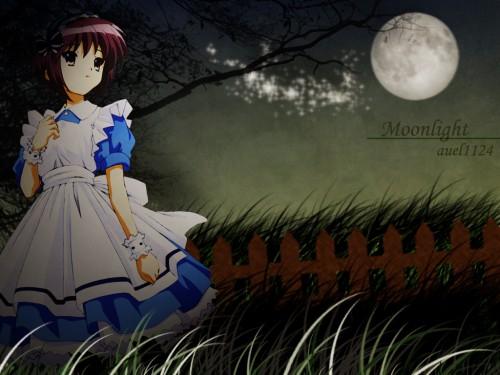 Noizi Ito, Kyoto Animation, The Melancholy of Suzumiya Haruhi, Yuki Nagato Wallpaper