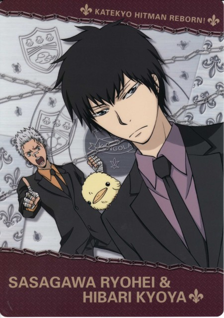 Katekyo Hitman Reborn!, Hibird, Ryohei Sasagawa, Kyoya Hibari