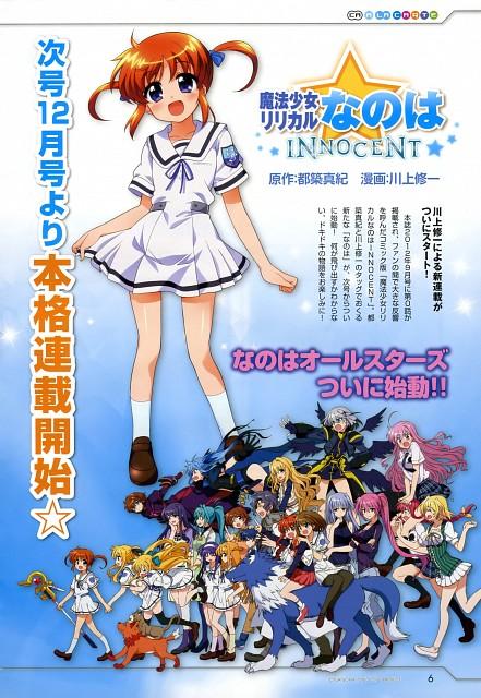 Shuuichi Kawakami, Mahou Shoujo Lyrical Nanoha Innocent, Stern The Destructor, Kyrie Florian, Reinforce