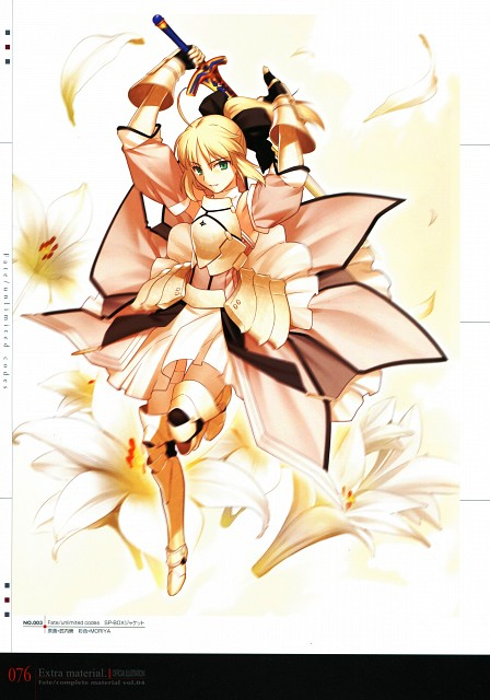 TYPE-MOON, Fate/complete material IV Extra material., Fate/stay night, Saber Lily