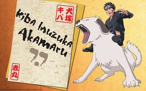 Studio Pierrot, Naruto, Akamaru (Naruto), Kiba Inuzuka, Official Wallpaper