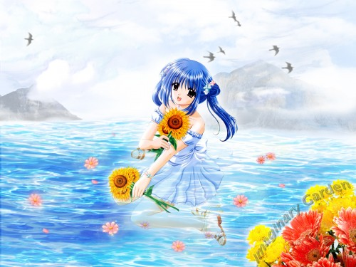 Aoi Nishimata Wallpaper