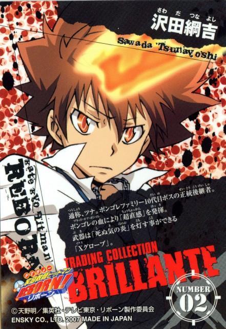 Akira Amano, Artland, Katekyo Hitman Reborn!, Katekyo Hitman Reborn!: Trading Collection, Tsunayoshi Sawada