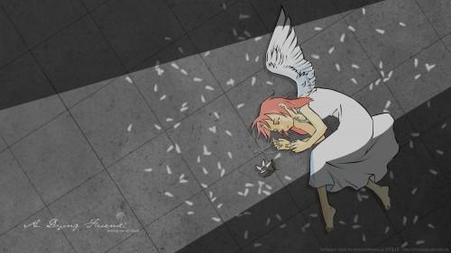 Hiromu Arakawa, BONES, Fullmetal Alchemist, Armony Angelstein Wallpaper