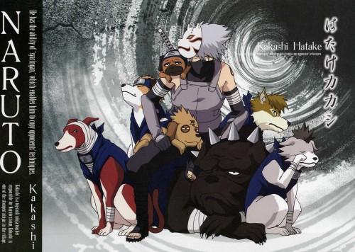 Studio Pierrot, Naruto, Kakashi Hatake, Pakkun