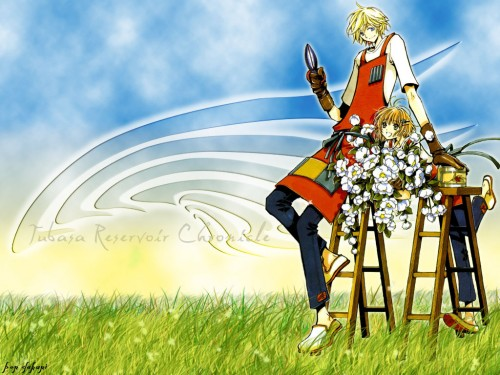 CLAMP, Bee Train, Tsubasa Reservoir Chronicle, Fay D. Flourite, Sakura Kinomoto Wallpaper