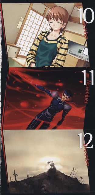 TYPE-MOON, Fate/stay night, Lancer (Fate/stay night), Taiga Fujimura