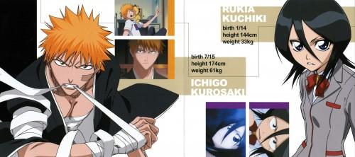 Studio Pierrot, Bleach, Rukia Kuchiki, Kon, Ichigo Kurosaki