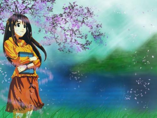 Ken Akamatsu, Love Hina, Naru Narusegawa Wallpaper