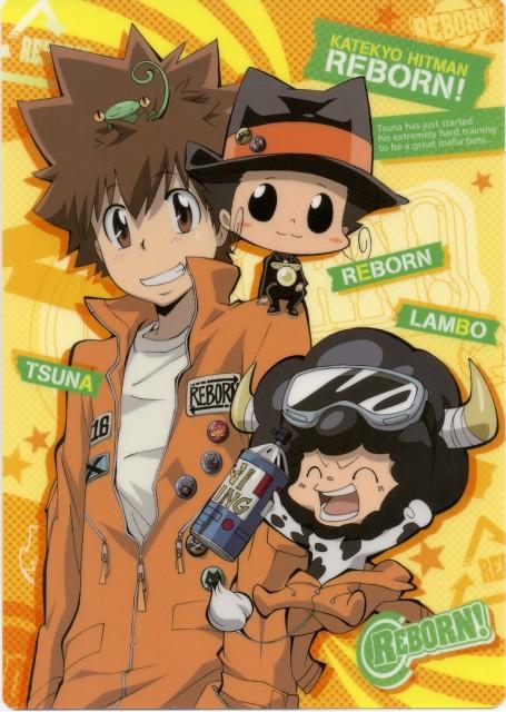 Katekyo Hitman Reborn!, Tsunayoshi Sawada, Reborn (Character), Leon (Katekyo Hitman Reborn!), Lambo