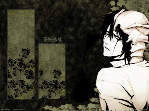 Kubo Tite, Studio Pierrot, Bleach, Ulquiorra Cifer Wallpaper