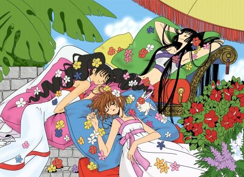 xxxHOLiC, Tsubasa Reservoir Chronicle, Yuuko Ichihara, Himawari Kunogi, Sakura Kinomoto
