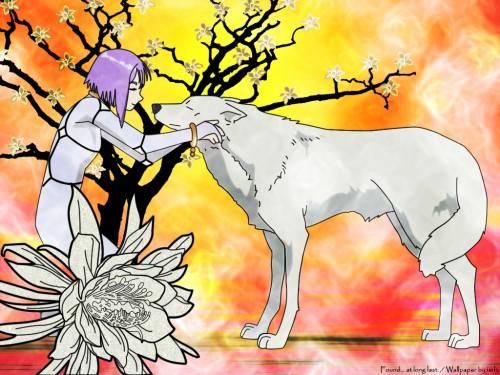 BONES, Wolf's Rain, Kiba (Wolf's Rain), Cheza Wallpaper