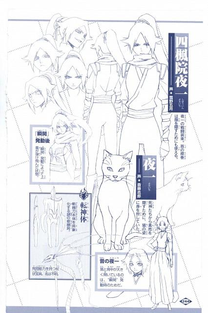 Studio Pierrot, Bleach, Yoruichi Shihouin, Character Sheet