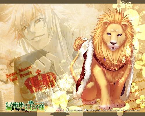 miko (Mangaka), Idea Factory, Beast Master and Prince, Matheus, Official Wallpaper