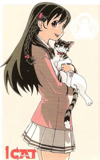 Yuji Iwahara, Cat Paradise, Kansuke, Yumi Hayakawa
