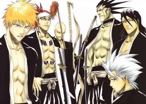 Kubo Tite, Bleach, All Colour But The Black, Ichigo Kurosaki, Toshiro Hitsugaya