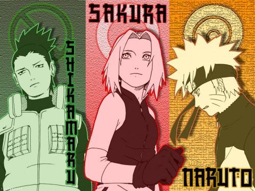 Masashi Kishimoto, Studio Pierrot, Naruto, Shikamaru Nara, Sakura Haruno Wallpaper