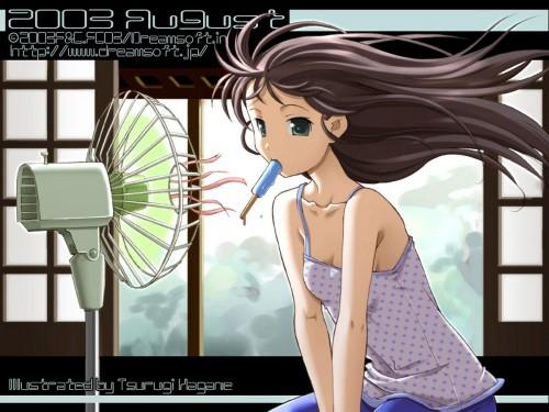Tsurugi Hagane, DreamSoft