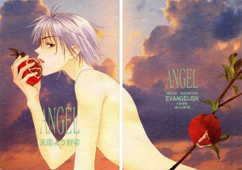 Hisaya Nakajo, Neon Genesis Evangelion, Kaworu Nagisa, Doujinshi, Doujinshi Cover