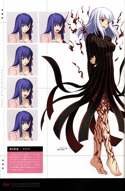 Ryuuji Higurashi, TYPE-MOON, Fate/complete material IV Extra material., Fate/stay night, Dark Sakura