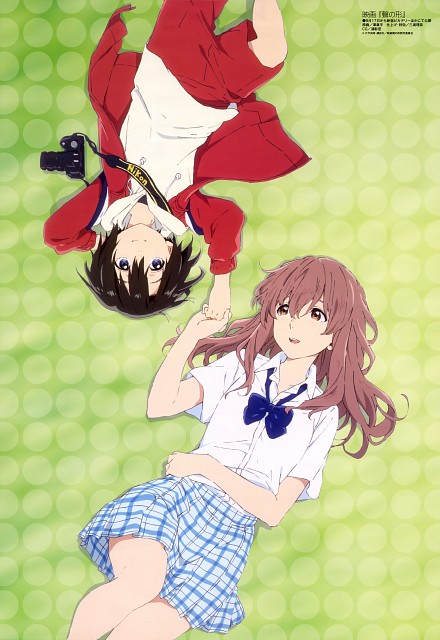 Yoshitoki Ooima, Shinpei Sawa, Kyoto Animation, Koe no Katachi, Yuzuru Nishimiya