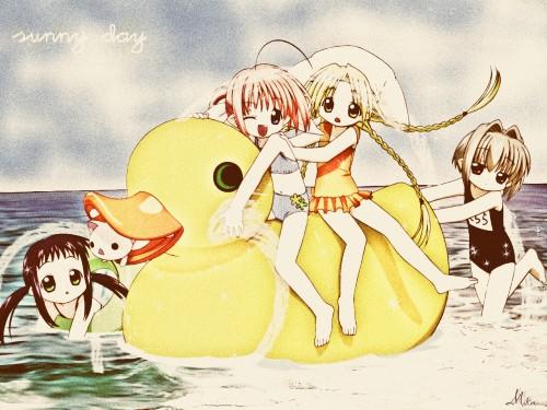 Yuiko Tokumi, Xebec, Bottle Fairy, Hororo, Chiriri Wallpaper