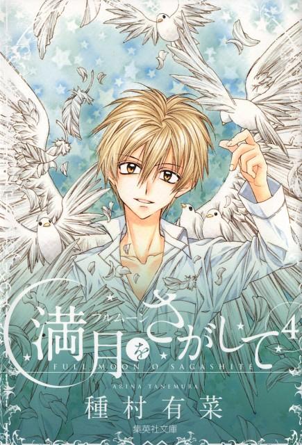 Arina Tanemura, Full Moon wo Sagashite, Eichi Sakurai, Manga Cover