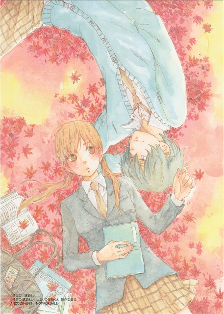 Robico, Tonari no Kaibutsu-kun, Haru Yoshida, Shizuku Mizutani, DVD Cover