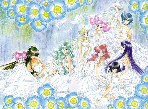 Naoko Takeuchi, Bishoujo Senshi Sailor Moon, BSSM Original Picture Collection Vol. V, Usagi Tsukino, Rei Hino