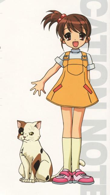 Shamisen (Suzumiya Haruhi)