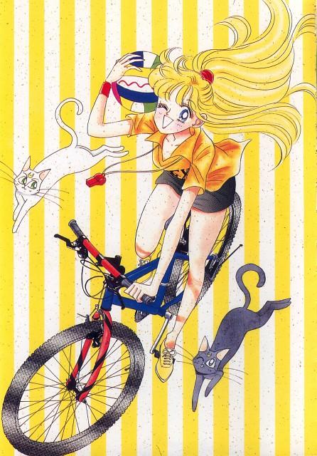 Naoko Takeuchi, Bishoujo Senshi Sailor Moon, BSSM Original Picture Collection Vol. I, Artemis, Luna