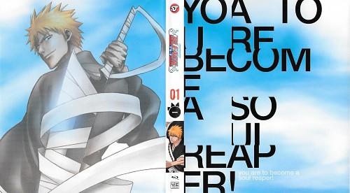 Bleach, Ichigo Kurosaki, DVD Cover