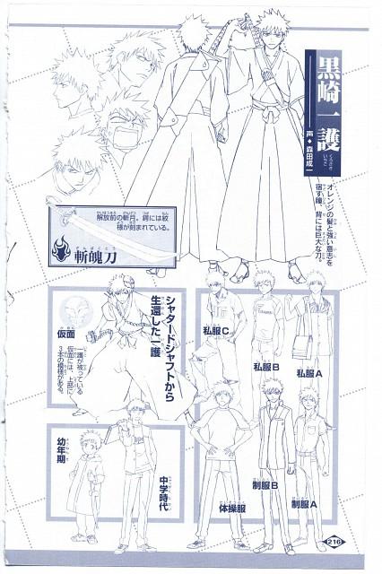 Studio Pierrot, Bleach, Ichigo Kurosaki, Character Sheet